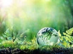 Baloise verstärkt Klimaschutz beim Anlegen